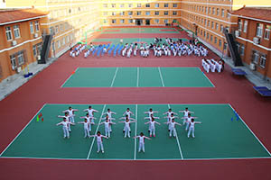 北京东方红学校国际高中入学条件