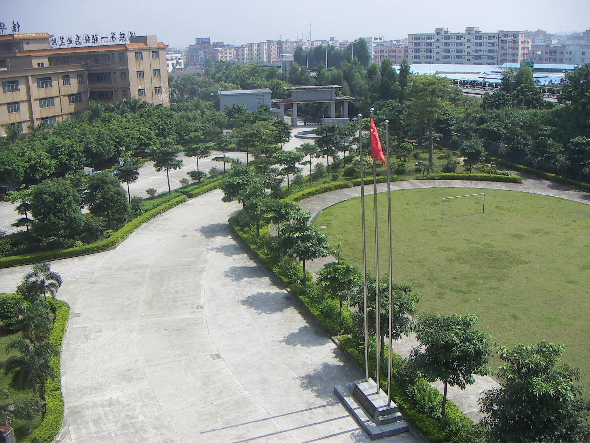 国际学校和公立学校哪个好?