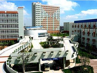 上海金苹果双语学校国际部7月开放日信息