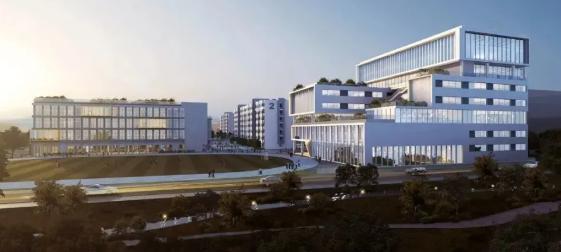 深圳市华朗学校华朗国际部学费一年多少?