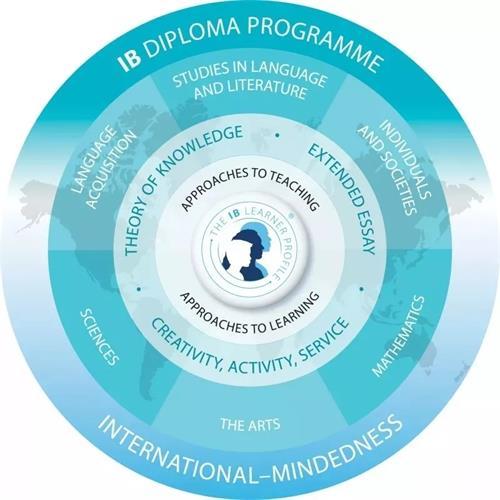 天津市实验中学国际高中(IB-DP)招生简章