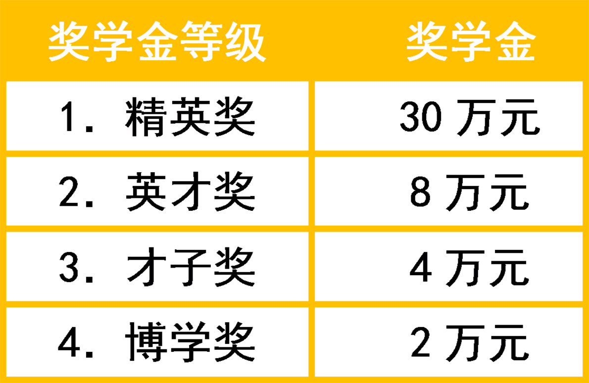 武汉海淀外国语实验学校国际高中奖学金发放政策