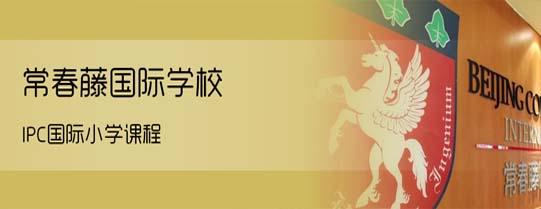 北京常春藤国际学校banner